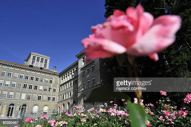 The World Trade Organisation headquarters are seen behind a rose on July 22 2008 in Geneva Crucial trade talks resume after a first day slammed as...