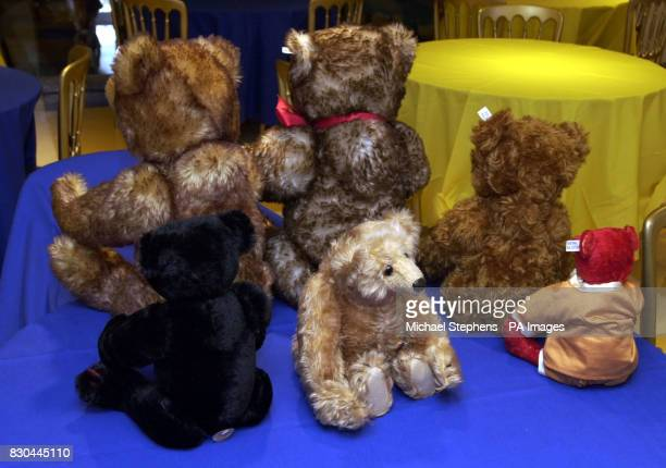 bear-dating-agency