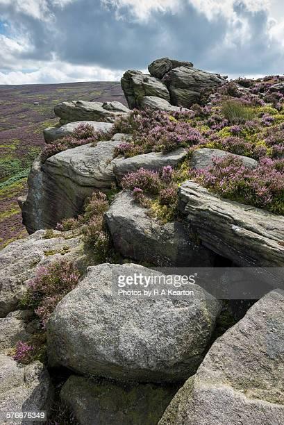 The Worm stones, Glossop, Derbyshire