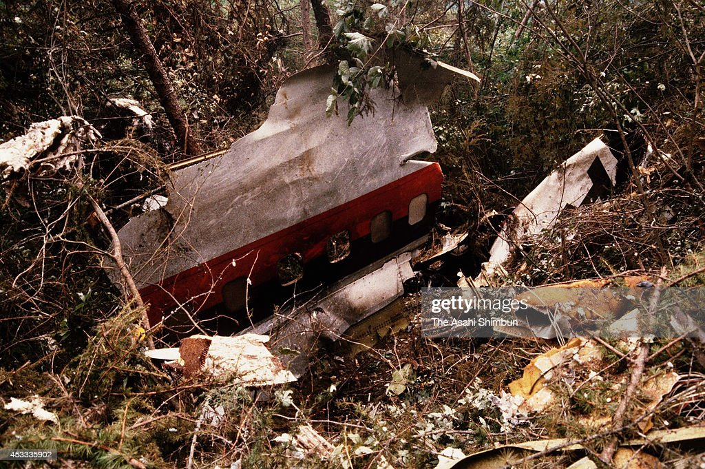 The wreckage of the JAL 123 aircraft are scattered at the crash site at the ridge of Mount Osutaka on August 13 1985 in Ueno Gunma Japan Japan...