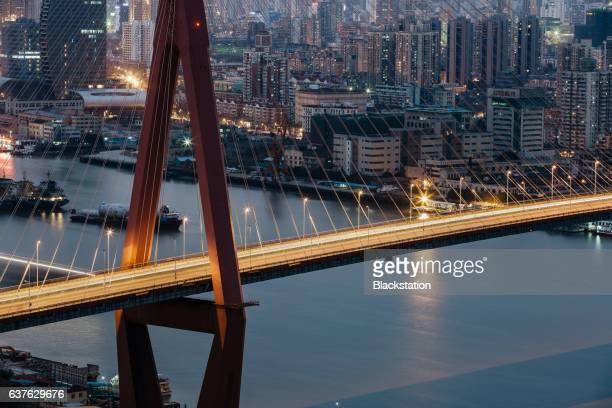 the Yangpu Bridge