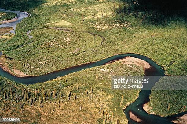 The Yukon River between Whitehorse and Dawson City Alaska United States of America