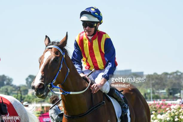 Theanswermyfriend ridden by Luke Nolen returns after winning the VRC Thanks Greg Miles Trophy at Flemington Racecourse on March 18 2017 in Flemington...