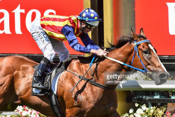 Theanswermyfriend ridden by Luke Nolen wins the VRC Thanks Greg Miles Trophy at Flemington Racecourse on March 18 2017 in Flemington Australia