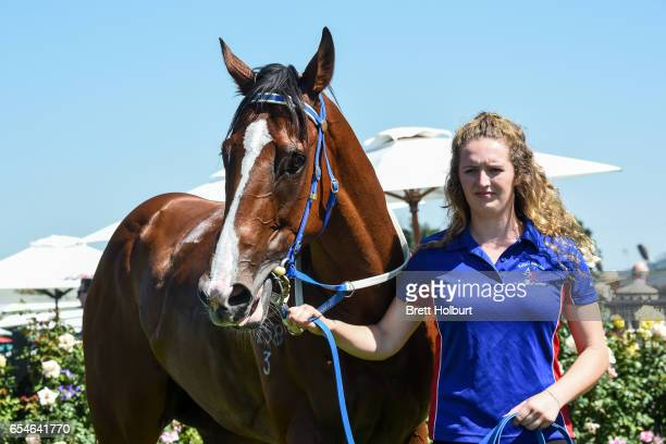 Theanswermyfriend with strapper Megan Andrews after winning the VRC Thanks Greg Miles Trophy at Flemington Racecourse on March 18 2017 in Flemington...