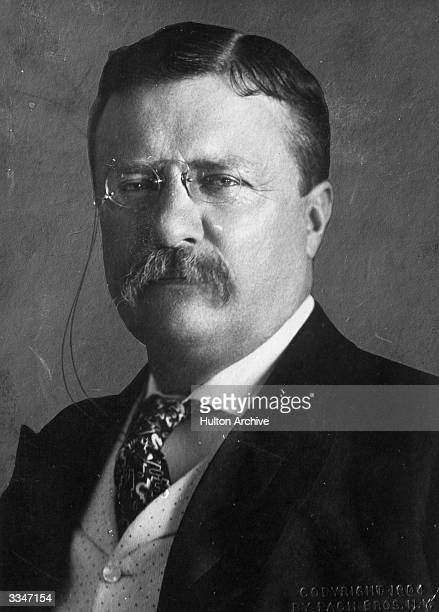 Theodore Roosevelt the 26th President of the United States of America Original Artist By Pach Brothers