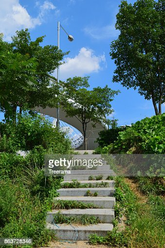 There is a marble staircase with grass growing up, overpasses and street lamps : Stock Photo