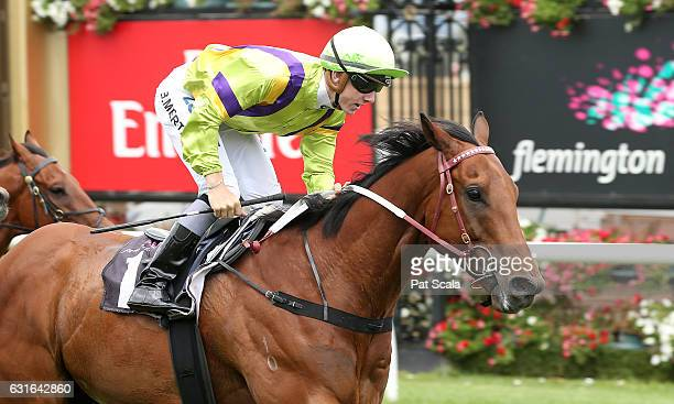Thermal Current ridden by Beau Mertens wins Arbroath Handicap at Flemington Racecourse on January 14 2017 in Flemington Australia