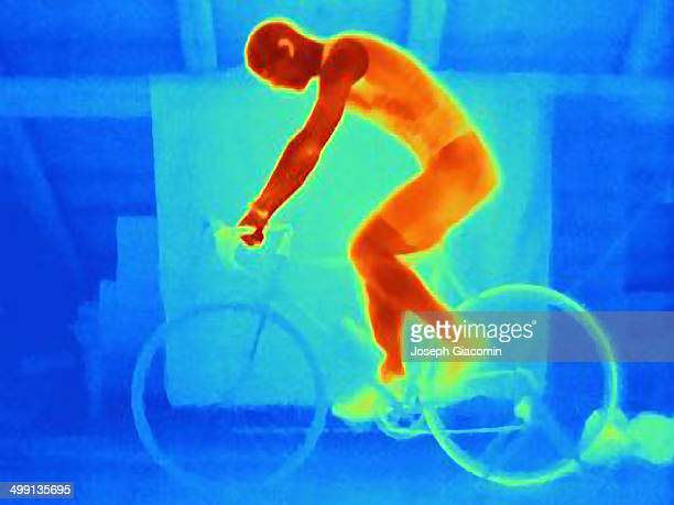 Thermal image of young male athlete in training, showing the heat of the muscles and of the bicycle tires