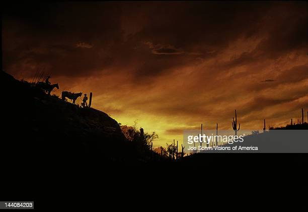 These are horseback riders at sunset in the Sonoran Desert They are in silhouette surrounded by the Tucson Mountains