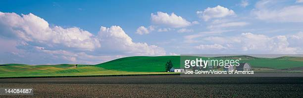 These are wheat fields and a farm in The Palouse It is the richest wheat growing area in the United States There are green fields and rolling hills...
