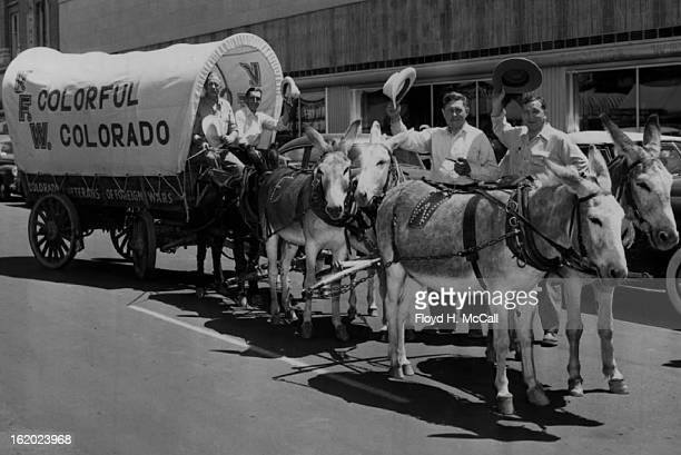 AUG 6 1950 These burros symbols of mining and the west and the Veterans of Foreign Wars' covered wagon will be shown at the Golden Jubilee in...