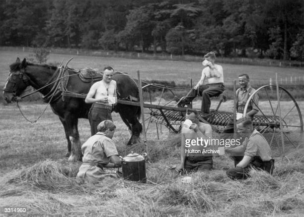 These Canadian soldiers who volunteered in their free time to help with the haymaking in the South of England stop for welcome cups of tea