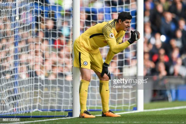 Thibaut Courtois of Chelsea directs his players his team mates during the Premier League match between Chelsea and Watford at Stamford Bridge on...