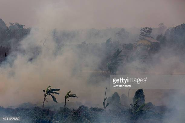Thick smoke is seen as fire burns peatland and fields at Ogan Ilir district on October 3 2015 in Palembang South Sumatra Indonesia The air pollution...