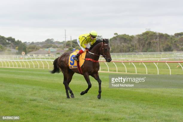 Think Babe ridden by Dean Yendall goes out for Allansford Hotel 3YO Maiden Plate at Warrnambool Racecourse on February 23 2017 in Warrnambool...