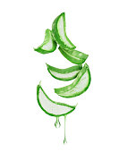 Thinly sliced stem of aloe vera with drops of juice