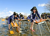 Thirdgrade students of Inuyama Junio High School wash their desks and chairs at Kisogawa River which water temperature is five degrees Celsius on...
