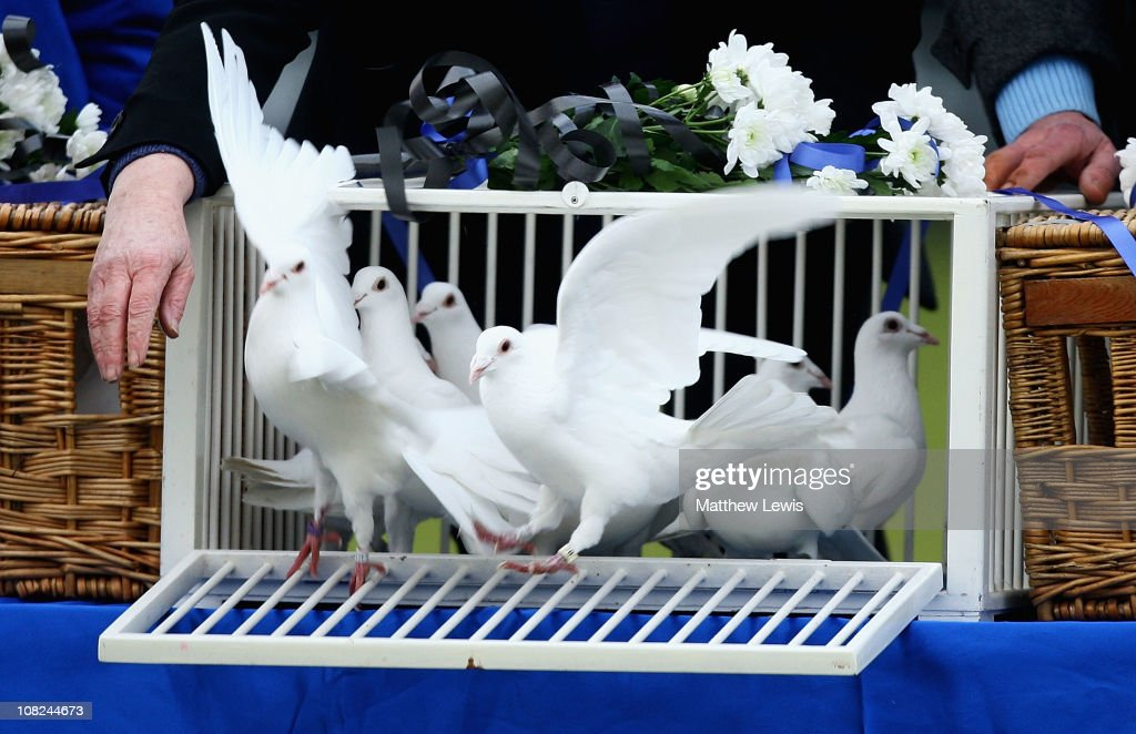 Thirty doves are released in memory of former Macclesfield Town player Richard Butcher, as today marks his 30th birthday during the npower League Two match between Macclesfield Town and Barnet at the Moss Rose Stadium on January 22, 2011 in Macclesfield, England.