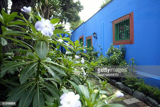 This 09 July 2004 picture shows part of the central patio of Mexican artist Frida Kahlo's Blue House in southern Mexico City Five big exhibitions...