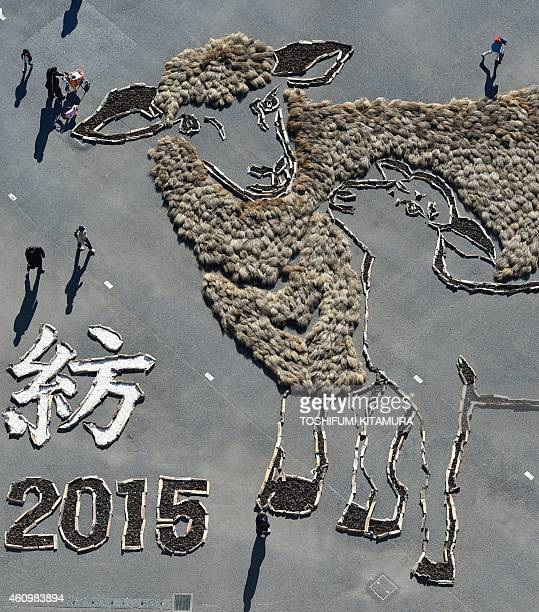 This aerial photo shows visitors looking at a 20 by 30metre picture of sheep displayed to celebrate the Year of the Sheep at the Hitachi Seaside park...