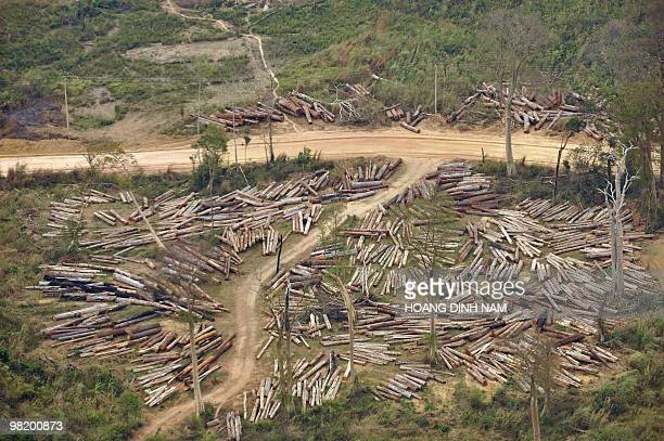 This aerial picture taken on March 26 shows a logging site inside a forest in Boulikhamsai According to foreign media and international environment...
