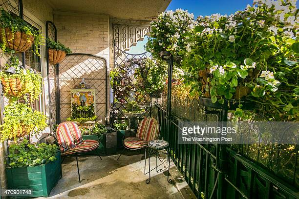 This balcony garden is surrounded by English ivy and nurtured with an irrigation system created entirely by Barron Womble from scratch on an annual...