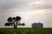 This file picture shows a wheat silo and a windmill in a field near Route 36 on the outskirts of Despenaderos in the province of Cordoba Argentina on...