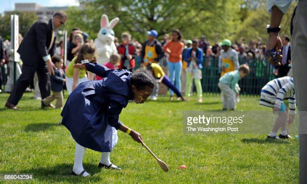 This girl concentrates on collecting her easter egg with a wooden spoon along with hundreds of children participating in the 2012 White House Easter...