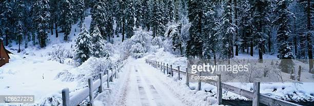 This is a small snow covered road after a winter snow storm