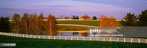 This is a thoroughbred horse farm It is called the Donamire Farm A white wooden fence winds throughout the farm for the horses to run in