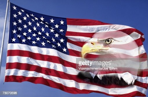 This is an American flag waving in the wind against a blue sky.  An American bald eagle is digitally composited into the right side of the flag into the red and white stripes. This is a digitally created image. : Stock Photo