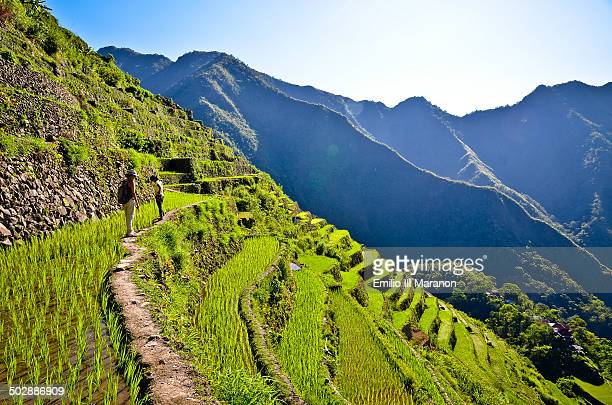 CONTENT] This is the 200 year old Batad Rice Terraces in Banaue Ifugao Philippines Declared a UNESCO World Heritage in 1995 along with four other...