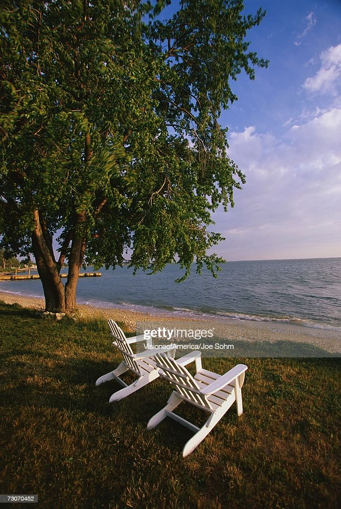 This is the Eastern Shore of Maryland. These are white wooden deck chairs sitting on the lawn. They are looking out over the Chesapeake Bay from the Morris Inn. There is a large green leafed tree to their left and a sandy beach in front of the bay. : Stock Photo
