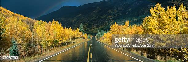 This is the Million Dollar Highway in the rain. The road is dark and wet. There are aspen trees with gold leaves on either side of the road.