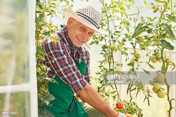 This man must love his garden. Debica, Poland