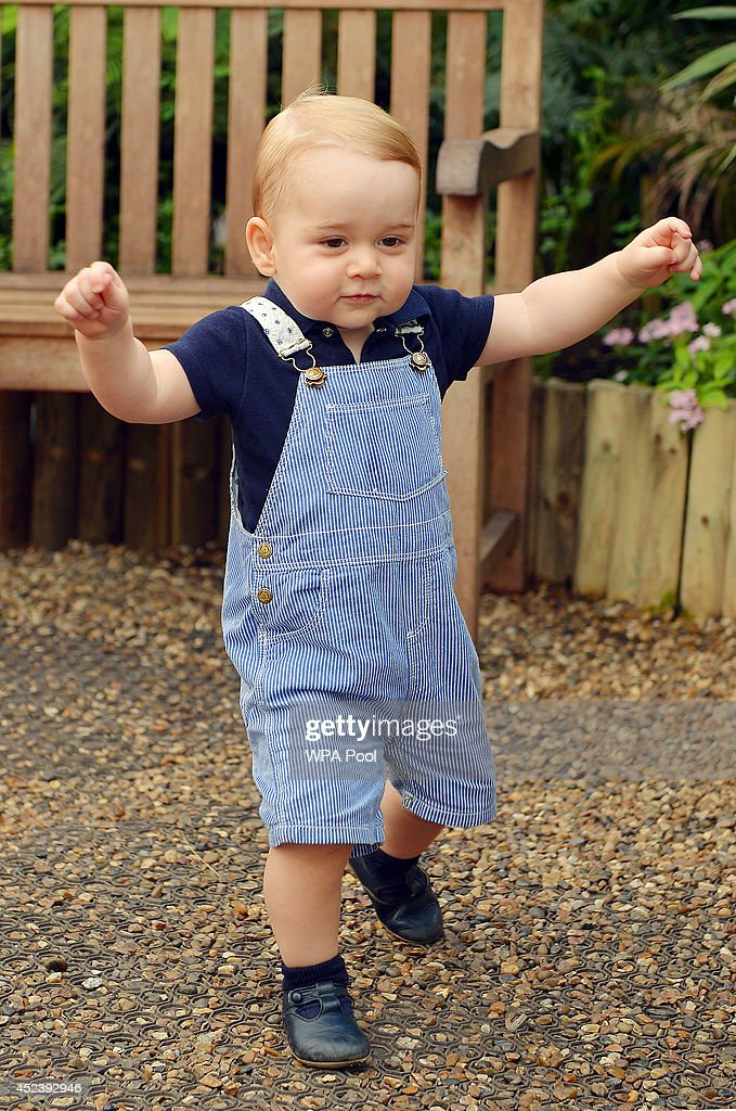 This photo dated Wednesday July 2, 2014, was taken to mark the first birthday of Prince George and shows the Prince during a visit to the Sensational Butterflies exhibition at the Natural History Museum on July 02, 2014 in London, England.