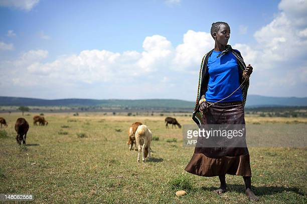 This photo made July 7 2012 shows Nasirku Rakwa tending to a herd of goats in the plains surrounding the village of Nkoilale in Narok district in...