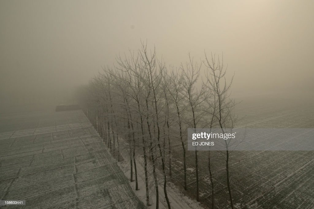 This photo shows a snow-covered field from the window of a high-speed train during a journey organised for journalists to showcase a newly-built section of track through Hebei province, south of Beijing on December 22, 2012. China was showing off to the media the final link of the world's longest high-speed rail route, set to open on December 26, stretching from Beijing to the southern Chinese city of Guangzhou. Travelling at around 300 kph, trains on the new route are expected to cover the 2,298-kilometre (1,425-mile) journey in a third of the current time from 22 hours to eight. AFP PHOTO / Ed Jones