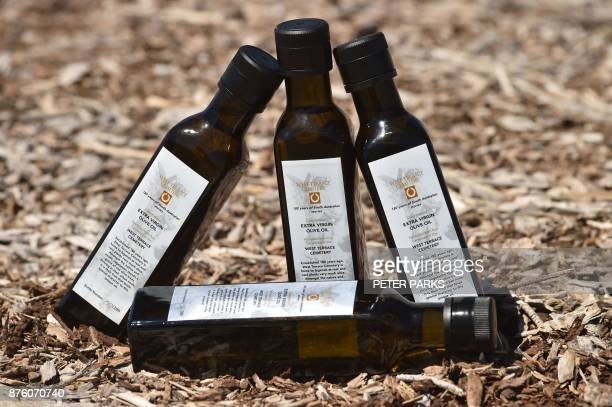 This photo taken in the cemetery on September 27 2017 shows the last four bottles of 2017 limitededition olive oil released to mark the 180th...