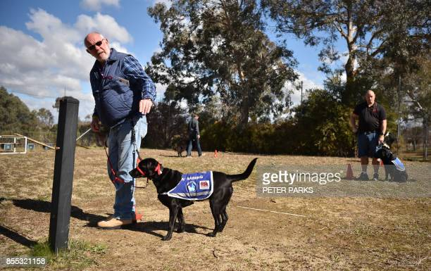 This photo taken on August 8 2017 shows John Hume former Australian navy veteran who fought in the Vietnam War training with his black Labrador...