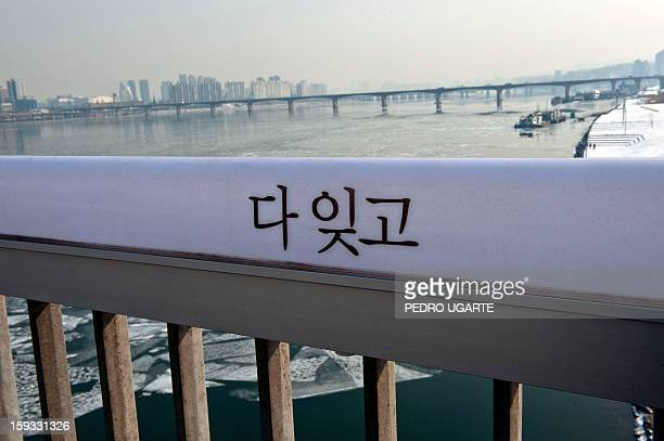 This photo taken on January 11 2013 shows a message in Korean reading 'Forget Everything' placed by the government to dissuade suicides at Mapo...