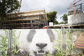 OUT*** THis photo taken on July 26 2016 in Rhenen shows the construction of the giant panda shelter 'Pandasia' at the Ouwehands Zoo / AFP / ANP /...
