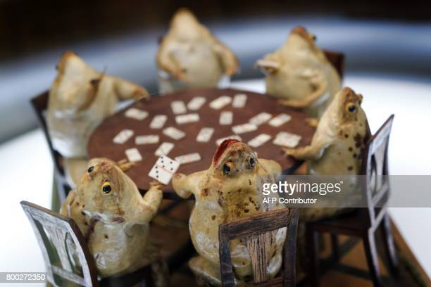 This photo taken on June 22 2017 shows a model of frogs playing cards at the Frog Museum in EstavayerleLac western Switzerland The museum shows a...