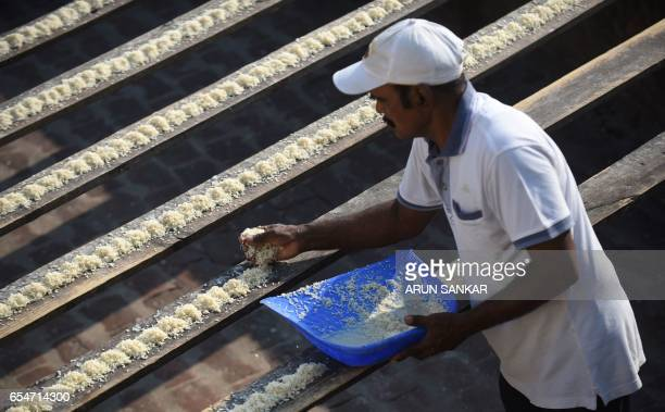 This photo taken on March 17 2017 shows Indian camera technician and parakeet enthusiast Joseph Sekar putting out bird feed for parakeets on the roof...