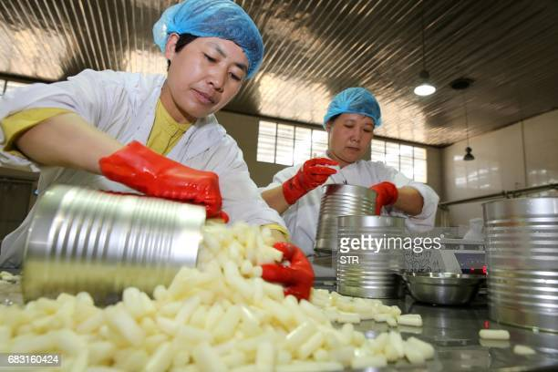 This photo taken on May 13 2017 shows workers processing asparagus at a food processing plant in Huaibei in China's Anhui province Products from the...