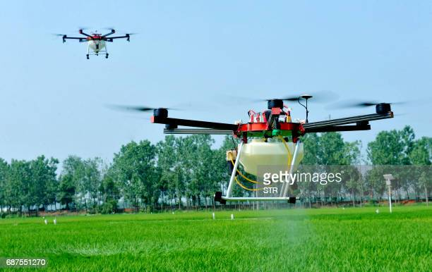 This photo taken on May 22 2017 shows agricultural drones being used to spray pesticide on crops in a village in Poyang central China's Jiangxi...