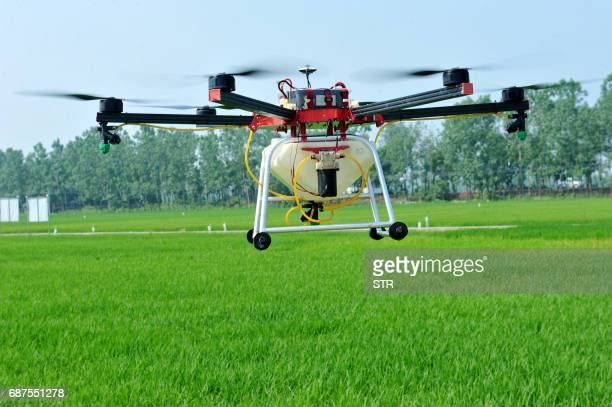 This photo taken on May 22 2017 shows an agricultural drone being used to spray pesticide on crops in a village in Poyang central China's Jiangxi...