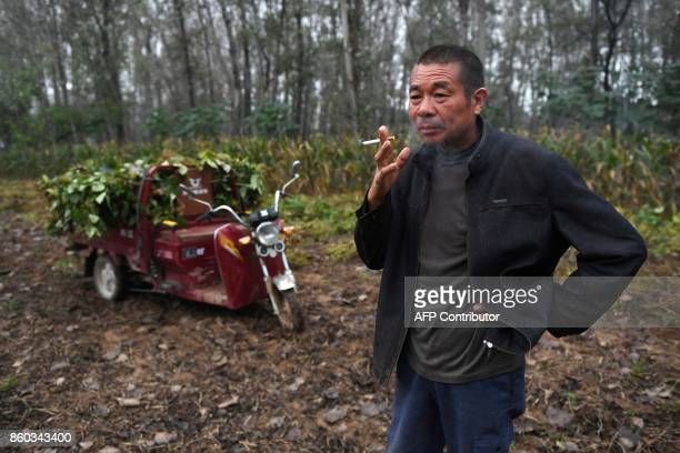 This photo taken on September 27 2017 shows a man smoking a cigarette in a field at a village in Lankao in China's central Henan province When...