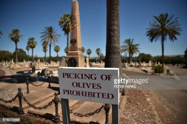 This photo taken on September 27 2017 shows a sign which says 'picking of olives prohibited' in Adelaide's West Terrace Cemetery From the graveside...